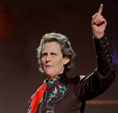 """Temple Grandin's """"humane"""" horse slaughterhouse was shut down after authorities found it did not succeed in humanely stunning horses."""